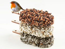 Acheter Desserts graines pour oiseaux - Mixed Temptation - 14,99€ en ligne sur La Petite Epicerie - Loisirs créatifs