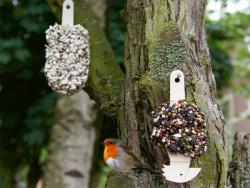 Acheter Desserts graines pour oiseaux - Delicious Red - 14,99€ en ligne sur La Petite Epicerie - Loisirs créatifs