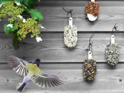 Acheter Desserts graines pour oiseaux - Indian Summer - 14,99€ en ligne sur La Petite Epicerie - Loisirs créatifs