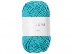 Acheter Pelote Ricorumi coton DK - Turquoise (39) - 1,19€ en ligne sur La Petite Epicerie - Loisirs créatifs