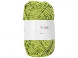 Acheter Pelote Ricorumi coton DK - Pistache (47) - 1,19€ en ligne sur La Petite Epicerie - Loisirs créatifs