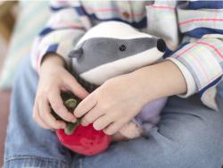 Acheter Peluche / doudou - le blaireau élégant - 29,95€ en ligne sur La Petite Epicerie - Loisirs créatifs