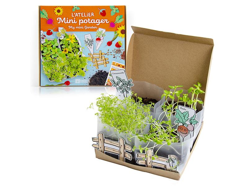 Acheter L'Atelier Mini Potager - 14,99€ en ligne sur La Petite Epicerie - Loisirs créatifs