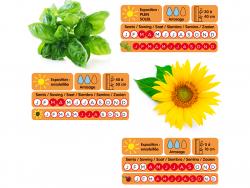 Acheter Valisette du jardinier - 29,99€ en ligne sur La Petite Epicerie - Loisirs créatifs