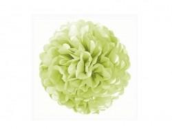 Pompon en papier de soie 20 cm - vert pomme  - 1