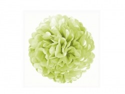 Tissue paper pom-pom (20 cm) - apple green