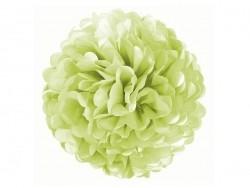 Pompon en papier de soie 30 cm - vert pomme