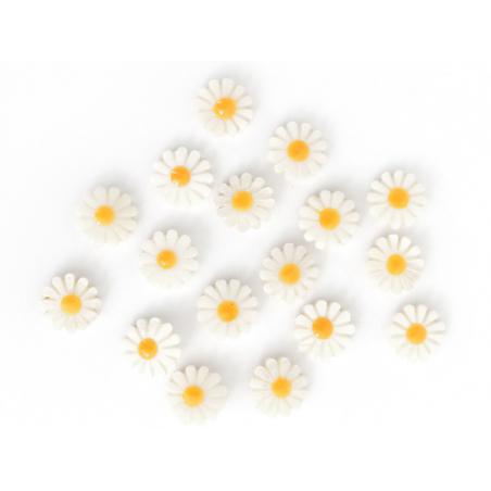 Acheter Perle paquerette en nacre véritable - 12 mm - 1,99€ en ligne sur La Petite Epicerie - Loisirs créatifs
