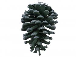 Acheter Décoration de Noël - pomme de pin naturelle - peinture et paillettes - vert foncé - 3,99€ en ligne sur La Petite Epi...