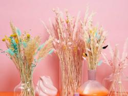 Acheter Bouquet de 6 fleurs séchées de pampa rose - 7,49€ en ligne sur La Petite Epicerie - Loisirs créatifs