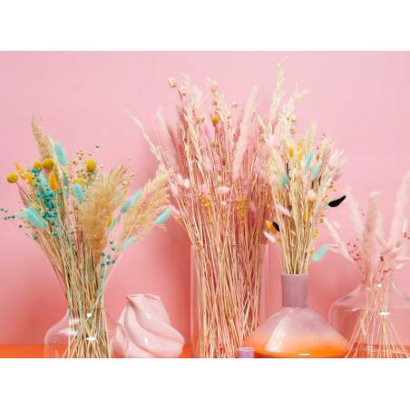 Acheter Bouquet de 6 fleurs séchées de pampa blanc - 7,49€ en ligne sur La Petite Epicerie - Loisirs créatifs