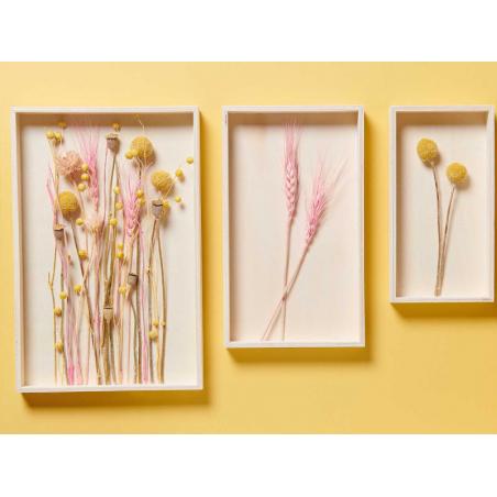Acheter Bouquet de 10 fleurs séchées de Craspedia - 7,49€ en ligne sur La Petite Epicerie - Loisirs créatifs